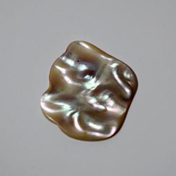 צדף טבעי. אבן אבאלון מ ניתן להשיג בלאפיס עולם הקריסטלים המרכז לאנרגיה רוחנית.